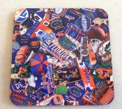 Florida Gators Coasters 4 Piece Set